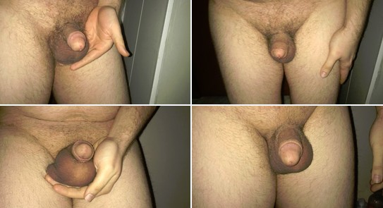 Buckeye sissy clitty collage